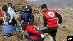 북한 구장군 용천리에서 주민들이 적십자의 지원을 받아 식목 사업을 벌이고 있다. (자료사진)