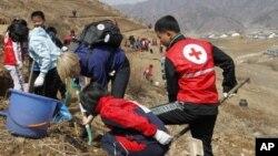 지난 2013년 4월 북한 구장군 용천리에서 적십자 직원들과 북한 학생들이 식목 삭업을 벌이고 있다. (자료사진)