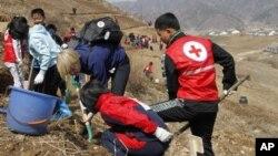 지난 2013년 북한 구장군 용천리에서 적십자 직원들이 학생들과 함께 식목 삭업을 벌이고 있다. (자료사진)