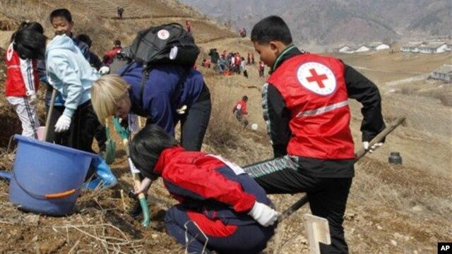 지난 4월 북한 구장군 용천리에서 적십자 직원들이 식목 삭업을 벌이고 있다.