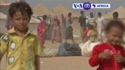 Manchetes Africanas 1 Dezembro 2015