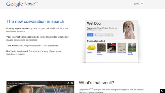 "This frame grab image released by Google shows the Google Nose site, a parody site in celebration of April Fools' Day. Having already debuted its wearable Google Glass, the company on Monday showcased ""Google Nose,"" adding scents to it search results."