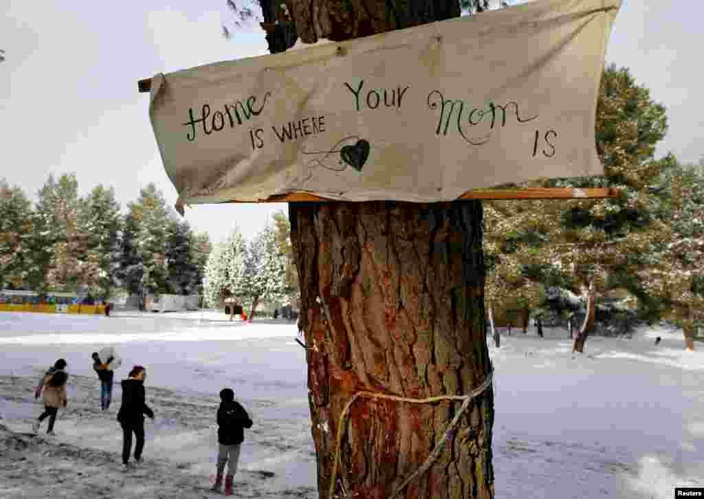 """Sebuah spanduk berbunyi """"Rumah adalah dimana ibumu berada"""" dipasang di sebuah pohon di sebuah kamp pengungsi sebelah utara Athena, Yunani, 10 Januari 2017."""