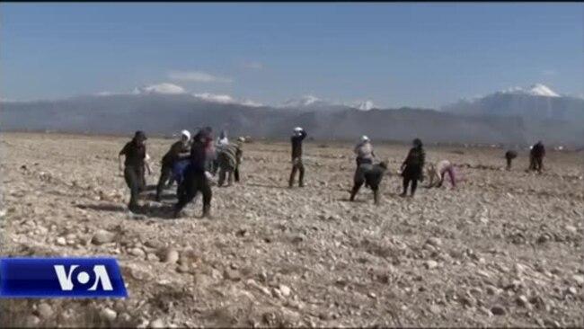 Situatë e vështirë për bujqësinë në Malësinë e Madhe