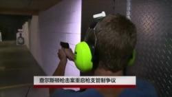 查尔斯顿枪击案重启枪支管制争议
