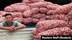 A man is seen between trucks loaded with garlic at a market in Jinxiang county in eastern Shandong province June 1, 2016. REUTERS/Jessica Macy Yu