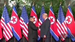 Кім Чен Ин чудова людина? Північно-корейські біженці відповіли Трампу. Відео