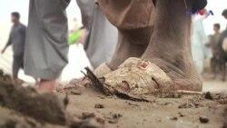 کراچی میں بارش سے مویشی منڈی دلدل بن گئی