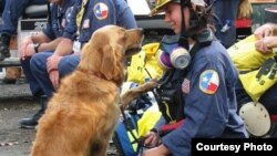 A photo of golden retriever Bretagne and her handler, Denise Corliss. (Barkpost.com)