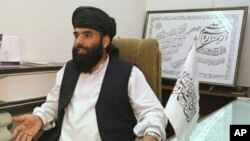 سهیل شاهین سخنگوی گروه طالبان - آرشیو