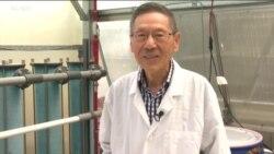 شیوه جدید استخراج اورانیوم از آب اقیانوس