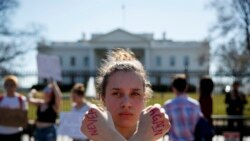 Quiz - US Universities Won't Punish Students for Protesting Gun Violence