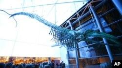 Proslava stogodišnjice otvaranja Prirodnjačkog muzeja u Los Andjelesu, 8. juna 2013.