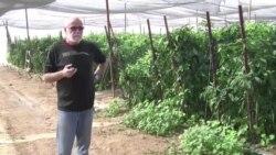 Israeli Farmers in Jordan Valley Fear Boycott