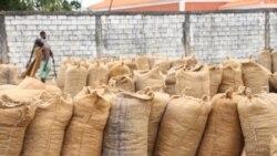 Encerramento de fábricas de caju lança milhares no desemprego em Nampula 2:30