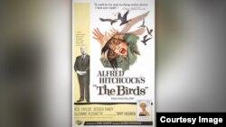 پوستر فیلم پرندگان، آلفرد هیچکاک ۱۹۶۳