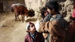 بریتانیا درباره گزارش بدرفتاری سربازان با کودکان افغان تحقیق می کند