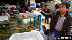 资料照:中国广州市的一个最大海鲜市场。(2014年2月26日)
