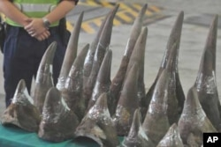 Rhino horns from South Africa seized late last year by customs officials in Hong Kong
