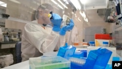 In this April 12, 2018 photo lab technician extracts DNA for whole genome sequencing at the Colorado Department of Public Health & Environment's Molecular Science Laboratory in Denver. Some experts say the new DNA testing is revolutionizing the way disease detectives to identify and solve food poisoning outbreaks. (AP Photo/P. Solomon Banda)