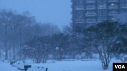 Nezapamcena snjezna mecava potpuno blokirala glavni grad Sjedinjenih Drzava