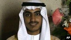 基地组织创始人本·拉登的儿子兼继承人哈姆扎·本·拉登