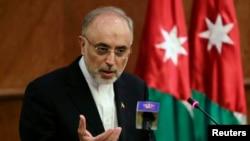 伊朗原子能負責人薩利希 (資料照片)