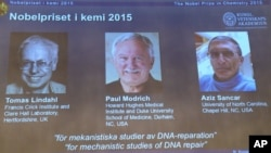 Panitia hadiah Nobel mengumumkan para peraih hadiah Nobel Kimia tahun ini, dalam konferensi pers di Stockhlm, 7 Oktober 2015. Dari kiri: Tomas Lindahl (Swedia), Paul Modrich (AS), Aziz Sancar (Turki).