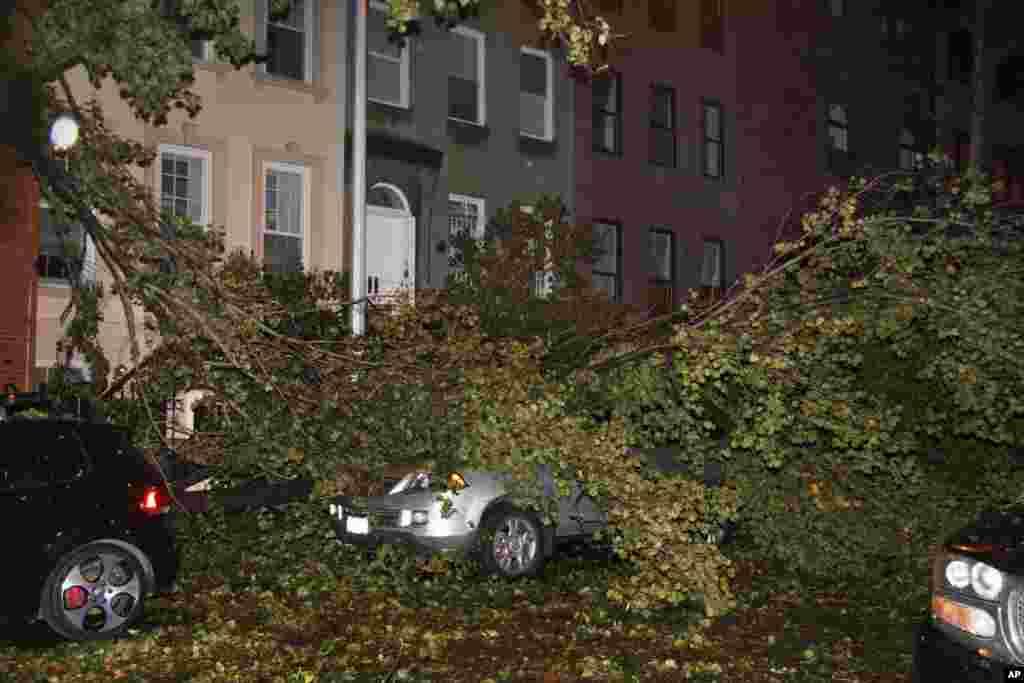 Нью-Йорк. Рухнувшие деревья в районе 47-й улицы на Манхэттене