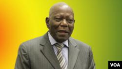 Former Zanu PF Secretary for Administration Didymus Mutasa
