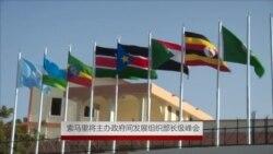 索马里将主办政府间发展组织部长级峰会