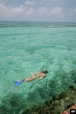 Snorkeling in the waters of Dry Tortugas National Park