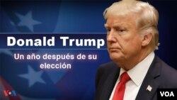 Tổng Thống Trump sau một năm cầm quyền