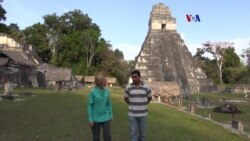 Nueva app para proteger Tikal