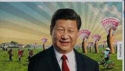 世界媒体看中国:改革的乌龙