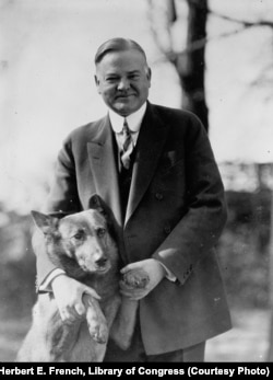 Herbert Hoover with his pet Belgian Shepherd dog King Tut, about 1928.