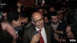 Selain mencalonkan dirinya sebagai presiden, Mohamed ElBaradei (foto) juga menentang amademen konstitusi yang, menurutnya, tidak komprehensif.
