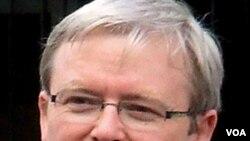PM Australia Kevin Rudd telah memperingatkan Jepang agar menghentikan pemburuan ikan paus.
