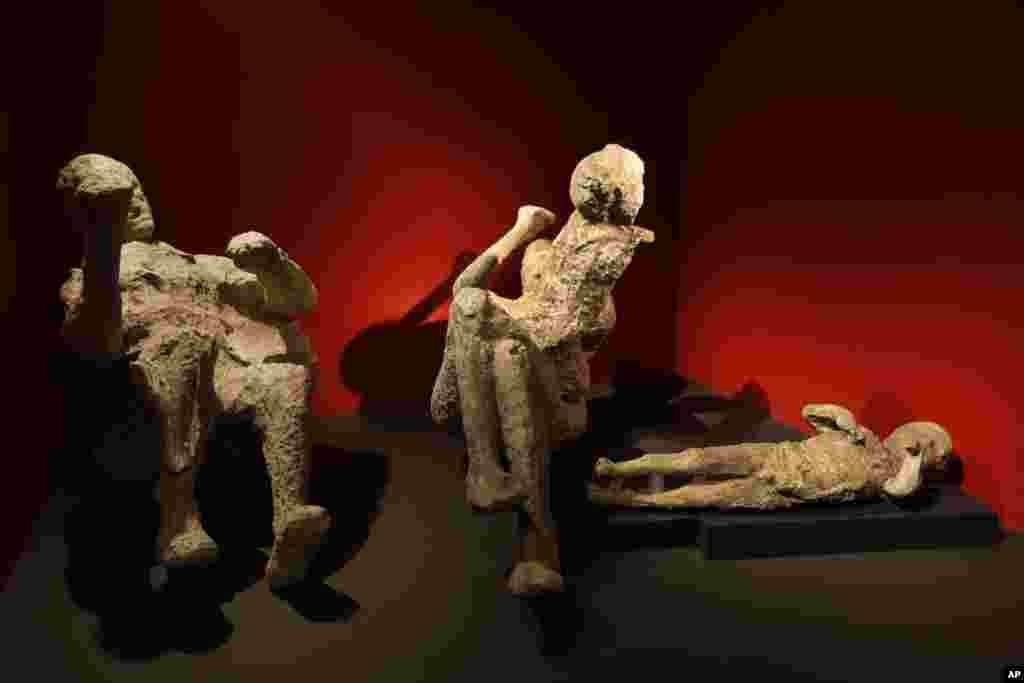 Xác bị phủ tro hóa thạch của một gia đình gồm hai người lớn và hai em nhỏ chết trong một góc tường ở Pompei sẽ được trưng bày trong một cuộc triển lãm sắp tới có tựa đề 'Sống và chết tại Pompei và Herculaneum' tại viện bảo tàng Anh ở trung tâm London.