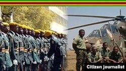 Zimbabwe Defence Forces Day