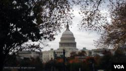 FILE- Capitol Hill in Washington, D.C., Nov. 10, 2013 (Diaa Bekheet/VOA).