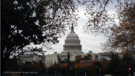 FILE- Capitol Hill in Washington, D.C., Nov. 10, 2013 (Diaa Bekheet/VOA).