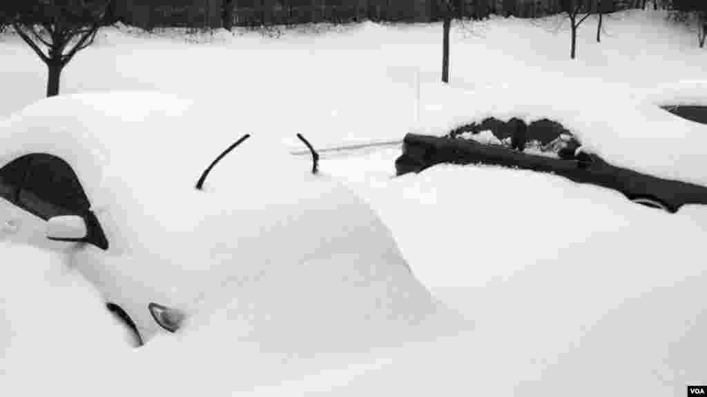 深陷雪中的车