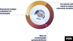 Azərbaycan Dövlət Neft Fondunun beynəlxalq əməkdaşlıq istiqamətləri