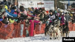 Dallas Seavey, winner of the 2012 Iditarod, charges down the trail during the re-start of the Iditarod dog sled race in Willow, Alaska, Mar. 3, 2013.