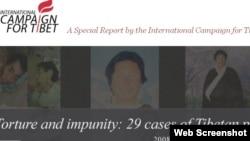 《虐待与免责:29例西藏政治犯的故事》网页版面(来源:国际声援西藏运动)