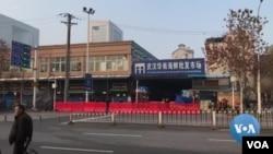 爆發新型冠狀病毒肺炎的武漢華南海鮮批發市場已經暫停營業
