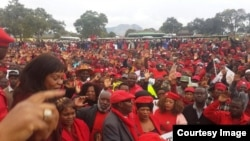 Supporters of the Movement for Democratic Change led by Morgan Tsvangirai.