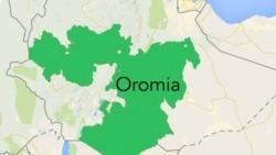 Godinaalee Oromiyaa Gama Lixaa Keessatti Tajaajilli Bilbilaa fi Interneetii Ammallee Guutummaatti Hin Deebine, Jedhama