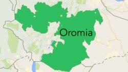 Oromiyaan diqqaattullee waan toletti jiraa jettee federeshiinii atileetiksii Itoophiyaa waliin hojjachuutti jriti